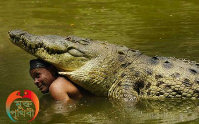 Man and Crocodile Friendship