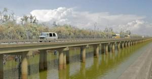 Atchafalaya-Basin-Bridge-USA